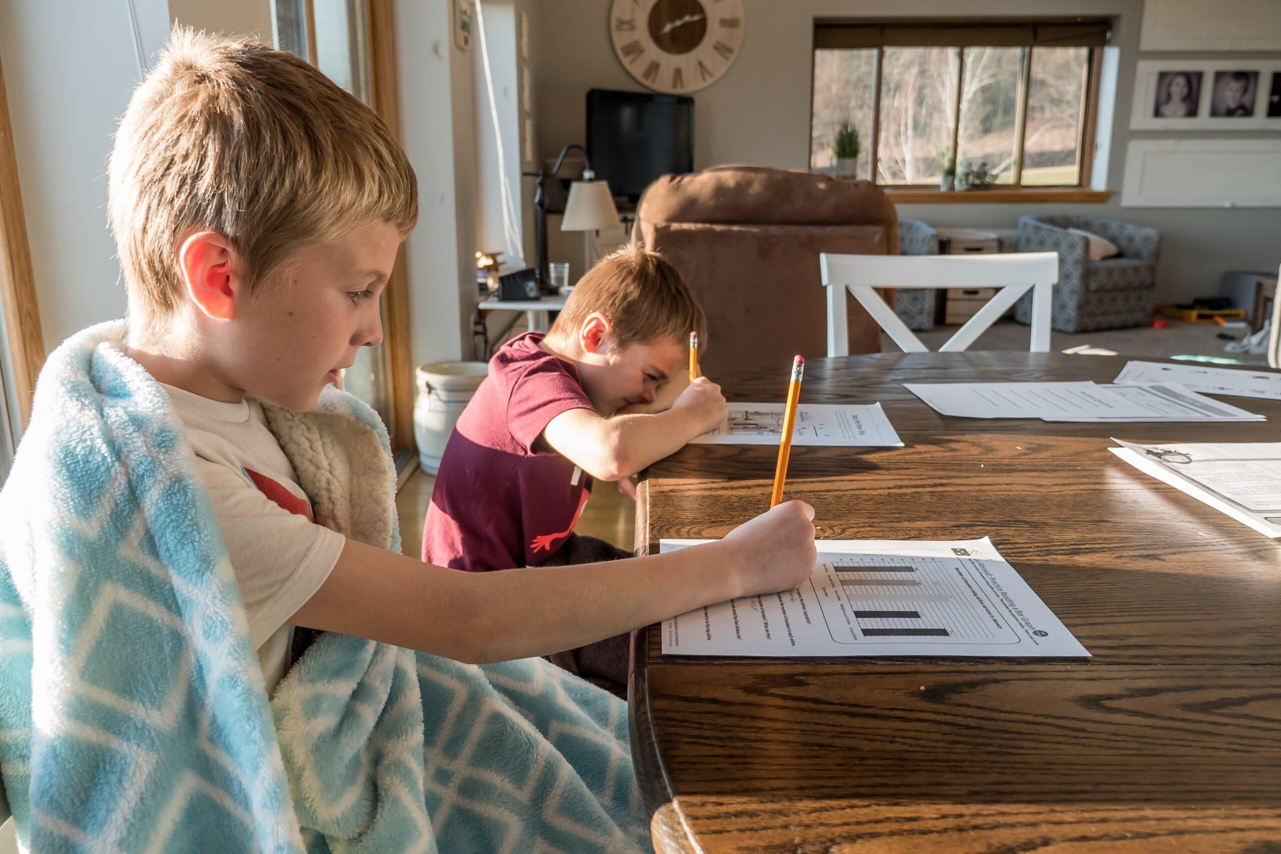 Все о семейном (домашнее) обучение в Украине